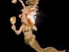 austrian-mermaids-5