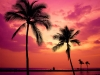 hawaii-sunset_easy-resize-com_