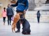 subotnja_spica_09_11_19-80-of-123