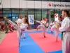taekwondo_klub_21_09_19-11-of-82