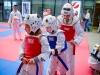 taekwondo_klub_21_09_19-69-of-82