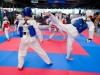 taekwondo_klub_21_09_19-74-of-82