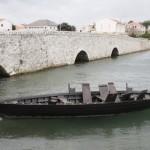 Condura Croatica  (Foto: Žeminea Čotrić)