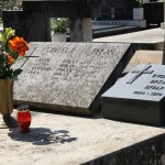 Grob braće Ante i Zvonimira Brkan (Foto: Ivan Katalinić)