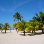 Ilustracija: Haiti