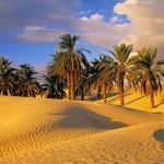 Ilustracija Tunis