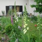 Ilustracija: uredite vrt po vasim zeljama
