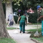 Nasadi radnici (Foto: Ivan Katalinić)