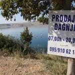 Uzgajalište Dagnji (Foto: Ivan Katalinić)